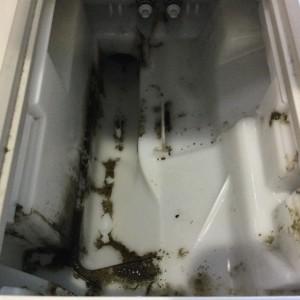 パナソニック NA-VX 洗剤投入口 洗浄前